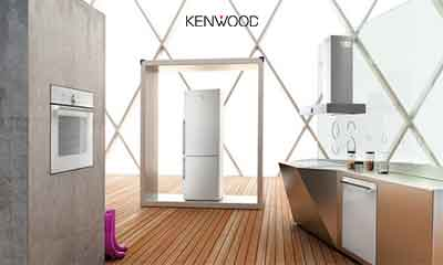Kenwood-Egypt-agent